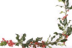 Ramitas del acebo aisladas en blanco Fotografía de archivo libre de regalías