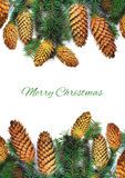 Ramitas spruce de la Navidad con los conos y texto en blanco Fotos de archivo libres de regalías
