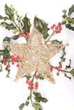 Ramitas y estrella del acebo aisladas en blanco Imagen de archivo