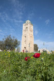 Ramla, Tower of Ramla Royalty Free Stock Photography