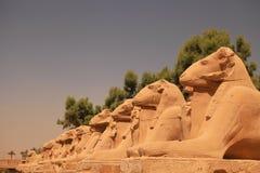 Ramma statyer av den Karnak templet, Luxor, Egypten arkivfoto