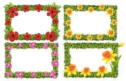 Rammall med färgrika blommor stock illustrationer