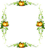 Rammall med pumpaväxter royaltyfri illustrationer