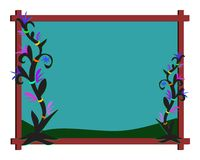 ramnattväxter Arkivfoton