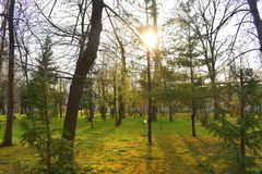 Ramnicu Valcea, Romania 02.04.2019 - The beautiful Zavoi Park in a spring sunny day royalty free stock image