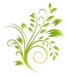 Ramo abstracto de enrollamientos verdes stock de ilustración