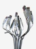 Ramo abstracto de Ethernet Fotos de archivo libres de regalías