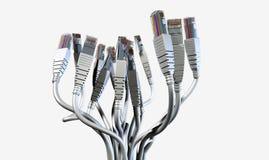 Ramo abstracto de Ethernet Fotografía de archivo libre de regalías