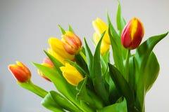 Ramo amarillo y anaranjado de tulipanes en fondo gris Imagen de archivo