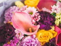 Ramo ascendente cercano de la lila del extremo con la cala Imágenes de archivo libres de regalías