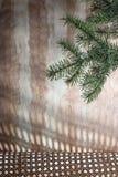 Ramo attillato verde su un fondo di legno vago fotografia stock