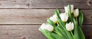 Ramo blanco de los tulipanes Imágenes de archivo libres de regalías
