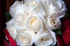 Ramo blanco de Rose Imagen de archivo