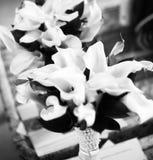 Ramo blanco y negro de la boda de flores de las calas imagenes de archivo