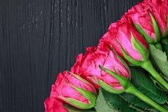 Ramo color de rosa del color de rosa hermoso Imagen de archivo