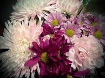Ramo colorido de flores Foto de archivo