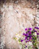 Ramo colorido de las flores en fondo de madera del vintage Imagen de archivo