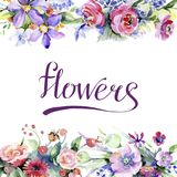 Ramo colorido Flor botánica floral Cuadrado del ornamento de la frontera del capítulo foto de archivo libre de regalías