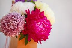Ramo colorido hermoso de la flor del aster Foco suave Imagen de archivo