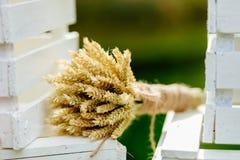 Ramo con las espiguillas del cierre del trigo para arriba Imagen de archivo
