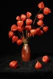 Ramo con las flores anaranjadas secas Imágenes de archivo libres de regalías