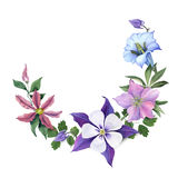 Ramo con las flores de la genciana y del jardín imagen de archivo libre de regalías