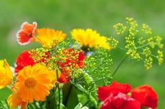 Ramo con las flores del verano Foto de archivo
