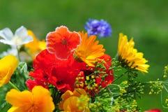 Ramo con las flores del verano Imagen de archivo libre de regalías
