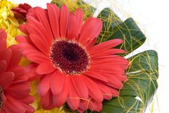 Ramo con las flores rojas y amarillas Fotografía de archivo
