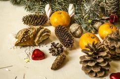 Ramo conifero con differenti pigne, mandarini Immagini Stock Libere da Diritti