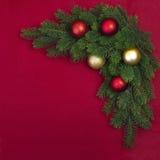 Ramo d'angolo dell'abete di Natale Fotografia Stock