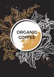 Ramo da árvore de café com folhas, flores e feijões de café Molde da cor Foto de Stock