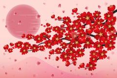 ramo da cereja de japão Fotos de Stock Royalty Free