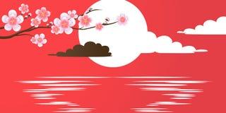 Ramo da flor de cerejeira no vermelho Ajuste de Sun na água Imagens de Stock