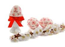 Ramo da flor do abricó e dos ovos da páscoa fotografia de stock