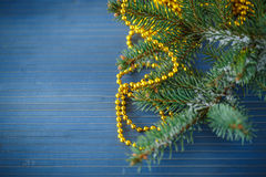 ramo da Pele-árvore com neve Foto de Stock Royalty Free