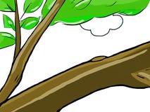 Ramo de árvore Foto de Stock
