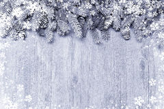 Ramo de árvore coberto de neve do abeto com decorações Fotografia de Stock