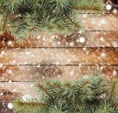 Ramo de árvore do Natal Fotografia de Stock Royalty Free