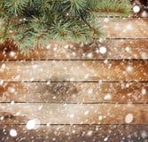Ramo de árvore do Natal Fotografia de Stock