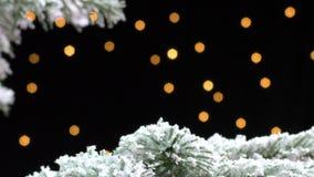 Ramo de árvore do Natal coberto na neve na noite filme