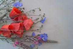 Ramo de amapolas y de wildflowers en el fondo de madera Foto de archivo