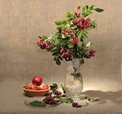 Ramo de ashberry en el florero de cristal y grupo de un r Fotografía de archivo libre de regalías