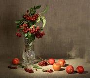 Ramo de ashberry en el florero de cristal y grupo de un r Fotos de archivo libres de regalías