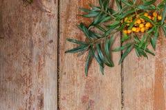 Ramo de bagas maduras do mar-espinheiro cerval em uma tabela vermelha de madeira Imagens de Stock Royalty Free