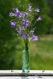 Ramo de campanillas en una botella Imagen de archivo