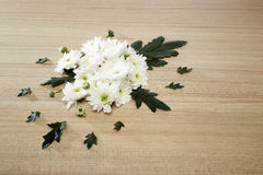 Ramo de crisantemos Fotografía de archivo