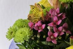 Ramo de diversas flores coloridas Imágenes de archivo libres de regalías