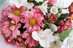 Ramo de diversos colores de sombras rosadas imagen de archivo libre de regalías