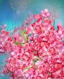 Ramo de estilo multicolor de la pintura de la acuarela de las flores Imagen de archivo